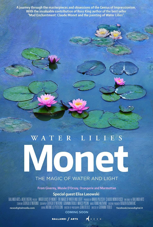 Nenufary Moneta - cuda z wody i światła